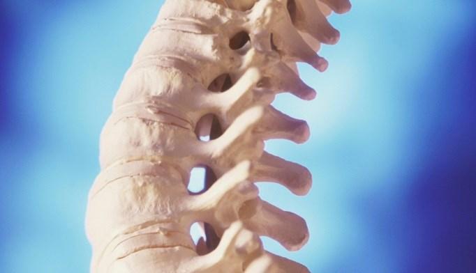 Romosozumab Boosted Bone Strength in Postmenopausal Women
