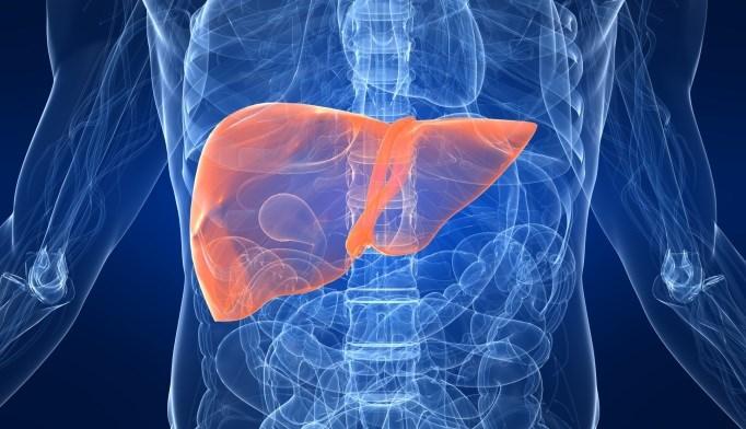 Low Testosterone, Sarcopenia Predicted Mortality in Advanced Liver Disease