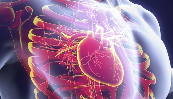 Noncardiovascular death is more common in patients with coronary heart disease.