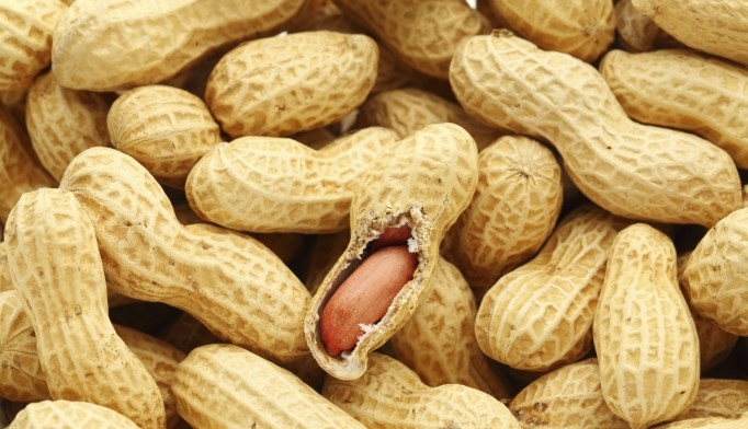 A high-fat meal that includes peanuts improves post-meal triglycerides.