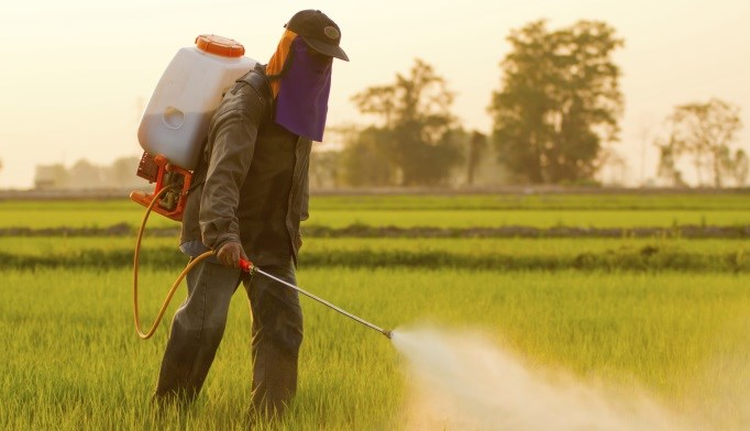 Pesticide exposure may be associated with a higher risk for diabetes.