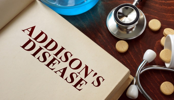 addison's disease: new guideline details diagnosis and treatment, Human body