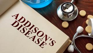 Is Addison S Disease In Dogs Genetic