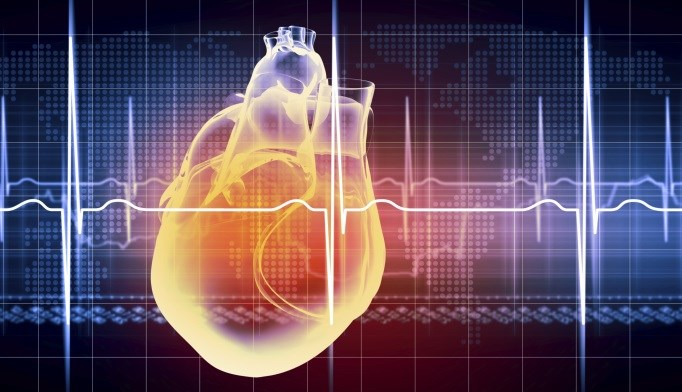 Researchers evaluated the risk for cardiovascular death in all EXAMINE participants.