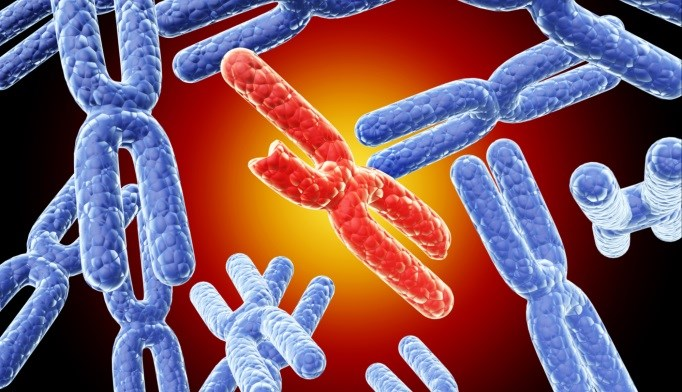 Researchers have found a major risk locus for Addison's disease.