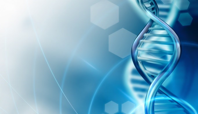Gene-Based Research Identifies Novel Adiposity Variants