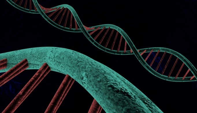 Embracing all the myriad variations of the human genome should, in theory, lead to rewards that all can share.