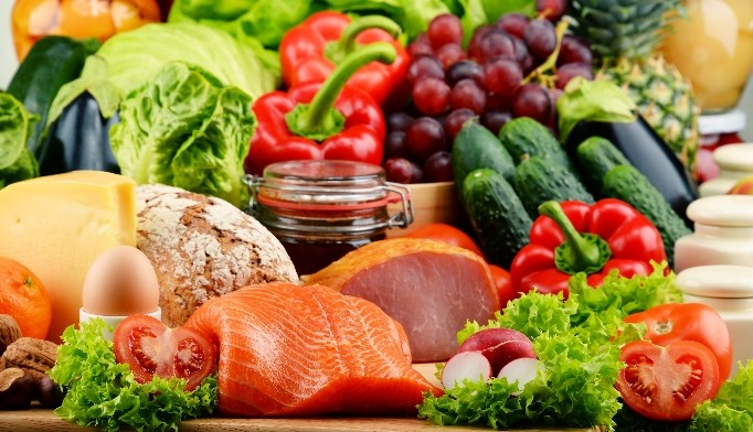 Metabolic Response in Animal vs Plant Protein-Based Diets