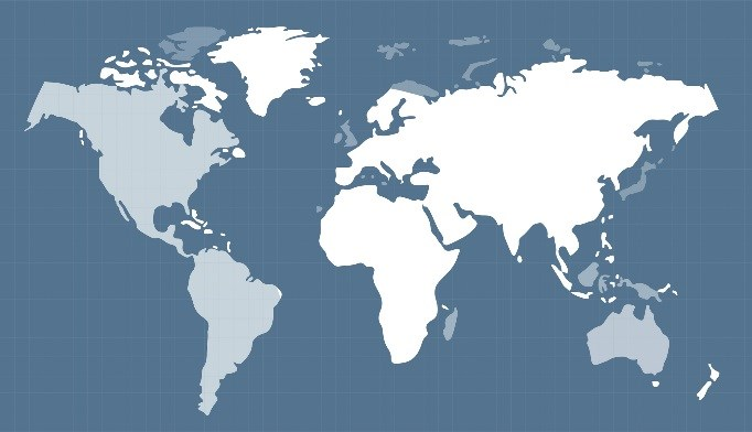 Worldwide Obesity Prevalence: BMI On The Rise in 70 Countries