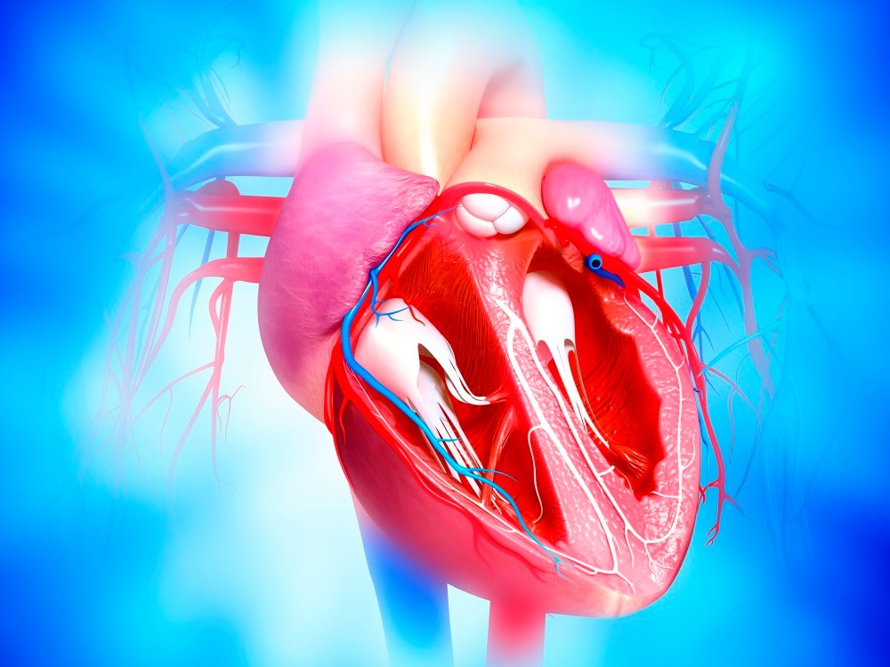The safety of established treatments for diabetes in patients with heart failure is uncertain.
