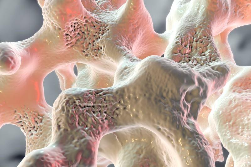 Prolonged Antiresorptive Activity With Zoledronate in Postmenopausal Osteopenia