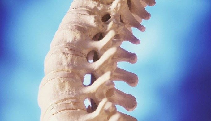 Romosozumab Boosted Bone Strength in Postmenopausal Women
