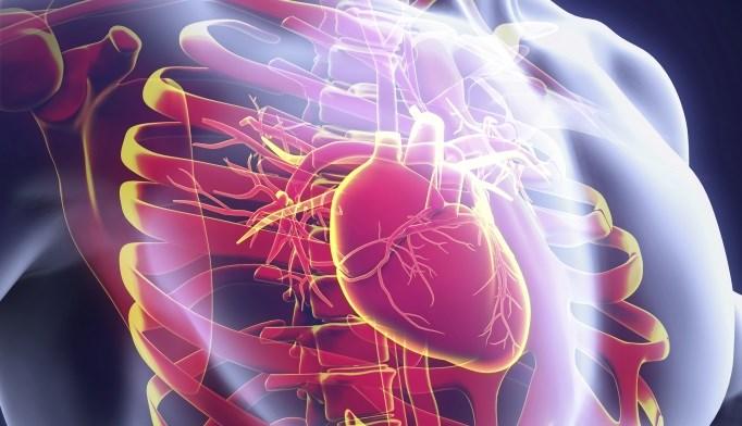 Low Bilirubin Predicts Coronary Artery Disease Risk in Metabolic Syndrome