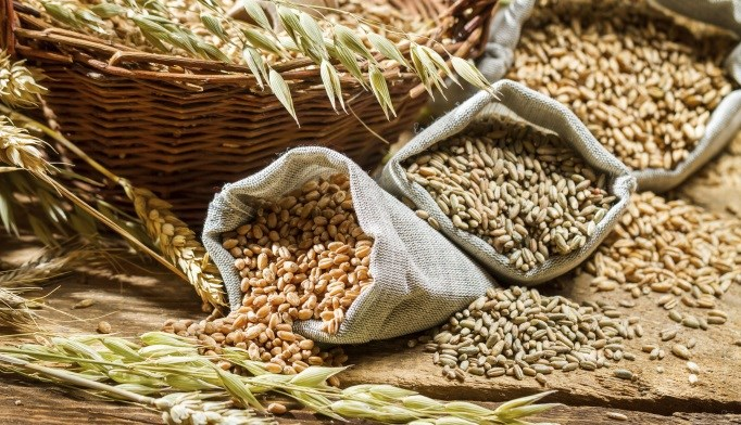Whole Grains May Protect Against Coronary Heart Disease
