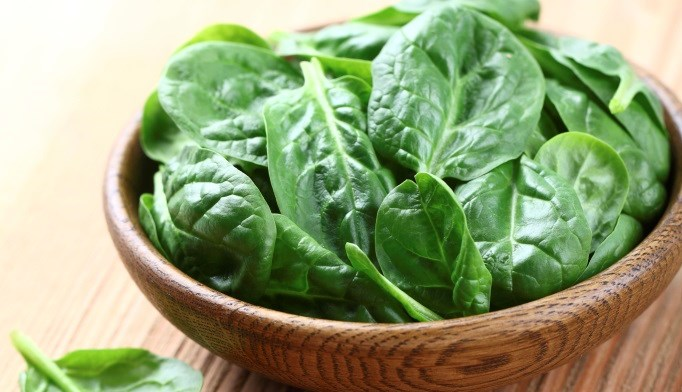 Vegetable Protein Intake Linked to Metabolic Syndrome in Type 2 Diabetes