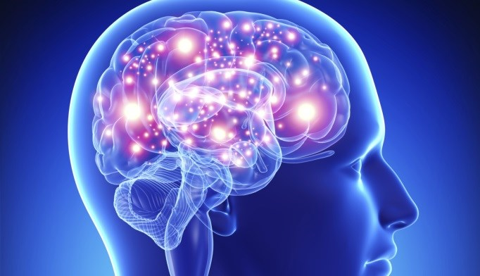 Can Diabetes Damage the Brain?