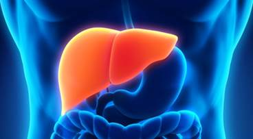 Topline Data Announced for Selonsertib in Patients With Compensated Cirrhosis Due to NASH