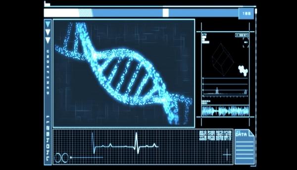 Mutational Testing