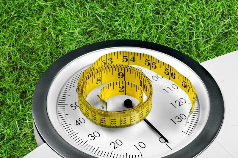 Weight Management With Routine Primary Care Effective for T2D Control, Remission