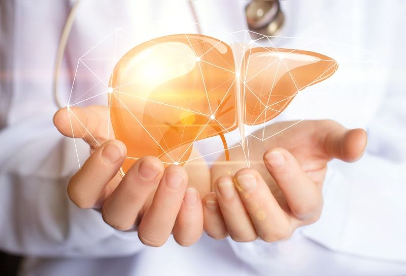 In a recent study, liver blood flow was higher in obese subjects at baseline and increased even further postoperatively.