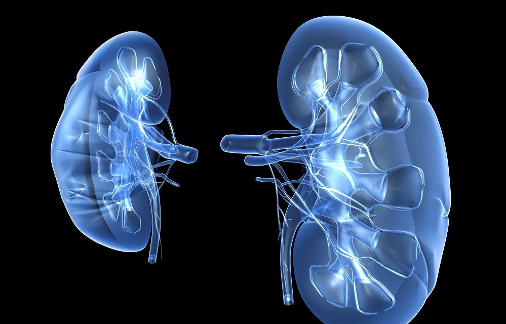 Chronic Kidney Disease More Common in Type 2 Diabetes Than in Type 1 Diabetes