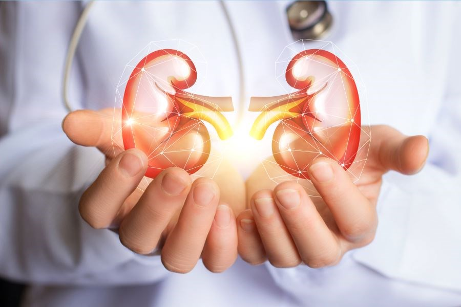 Sacubitril/Valsartan May Help Preserve Kidney Function in Patients With HFrEF